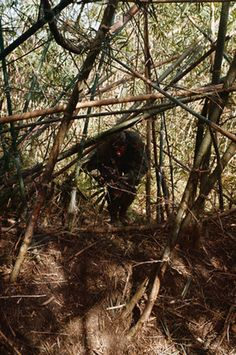 LRRP running through the jungle ~ Vietnam War