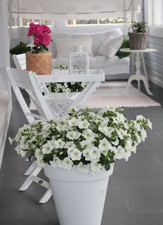 k o t i p o r s t u a: Lasikuistin kesäkukat ja retrot pinnatuolit Back Patio, Small Patio, White Gardens, My Secret Garden, Summer Flowers, House Front, Flower Beds, Container Gardening, Outdoor Living