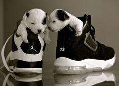 The Jordans.