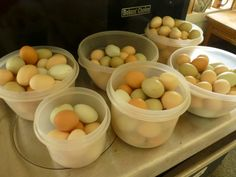 Rural Revolution: Dehydrating eggs