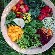 Salads don't have to be boring....bring a fun selection of fruits and veggies to the party.   Cherry tomatoes, mangos, zucchini, chopped beet stalks, strawberries, handful of cilantro, scallions, calendula petals,  a few squeezes of lime.