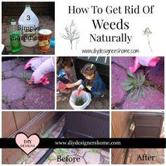 Get Rid Of Weeds Natural DIY