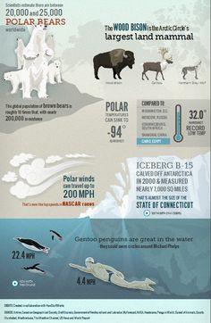 Frozen Planet [Interactive]