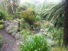 peaceful Peace, Plants, Planters, Plant, Planting, Room