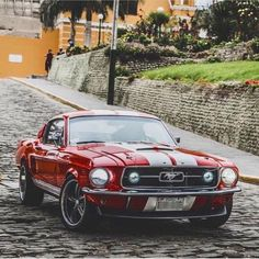 Mustang GT 1968 American muscle cars are actually a staple of the particular motor vehicle Ford Mustang 1967, Ford Mustangs, Ford Mustang Eleanor, Ford Mustang Shelby Gt500, Mustang Cobra, Ford Gt, Muscle Cars Vintage, Custom Muscle Cars, Vintage Cars