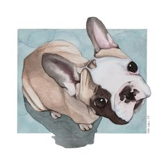 Gizmo is my little french bulldog puppy. When I snapped this picture, I knew I needed to paint it! -Watercolors More info and commission info available at Doggie-Doodle French Bulldog Art, French Bulldog Puppies, French Bulldogs, Dogs Playing Poker, Friends Illustration, Watercolor Portraits, Watercolor Artists, Dog Artwork, Bulldog Frances