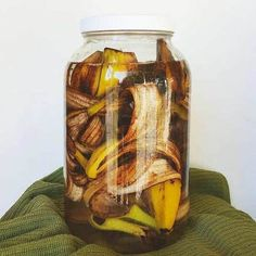 Making banana tea is a great natural fertilizer for any plants. Simply soak the banana peels in filtered water for 3 days to a week, then pour the liquid around your plants and afterwards throw the peels in your compost bin! by estelat Water Plants, Garden Plants, Indoor Plants, Indoor Garden, Outdoor Gardens, Garden Compost, Vegetable Garden, Organic Gardening, Gardening Tips