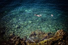 Millie Brown Photographer Swimming Off the Rocks..