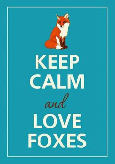 Love Foxes. :)