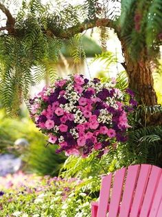 Learn about the Best Plants For Hanging Baskets. Hanging baskets filled with colorful flowers and plants are very showy and elegant and adorn any garden. Hanging Flower Baskets, Hanging Planters, Hanging Plants Outdoor, Fall Planters, Diy Hanging, Pink Garden, Dream Garden, Container Plants, Container Gardening