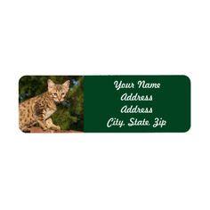 Savannah Cat Return Address Sticker Label