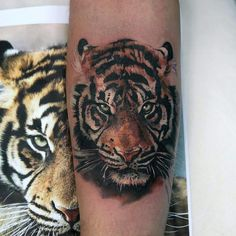 Realistic Tiger Portrait Tattoo
