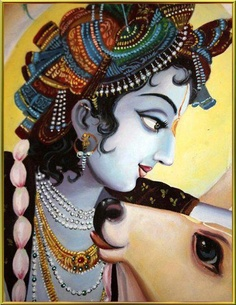 .Krishna teaches us to protect the cows.