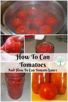 When planting tomatoes, saving them is important. I like to can tomatoes and can tomato sauce for all year long enjoyment.The Homesteading Hippy via @homesteadhippy
