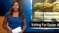 TV news reporter quits live on air over Alaska Cannabis Club – video