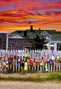 Sunset over Sandy Neck cottages in Barnstable, MA with old buoys hanging on a picket fence by Charles Harden, Harden Studios, Barnstable, Cape Cod Cape Cod, Indian Summer, Maine, Just Dream, All I Ever Wanted, Oh The Places You'll Go, New England, The Best, Beautiful Places