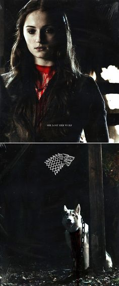 Sansa Stark: She lost her wolf. #got #asoiaf