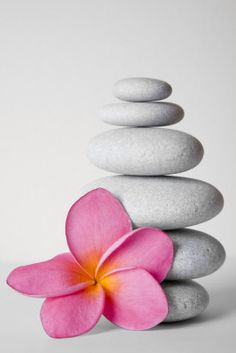 Zen Pebbles and Frangipani Flower by Alex Bramwell Zen Meditation, Zen Yoga, Zen Zen, Feng Shui, Buddha Zen, Paz Interior, Still Life Photography, Color Splash, Relax