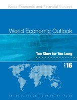 Book summary of World Economic Outlook April 2016 by International Monetary Fund.  The IMF sees a strong possibility of decelerating growth in the global economy for 2016.