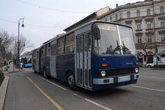 IHO - Közút - Centenáriumi buszünnep a Városligetben Budapest, Buses, Transportation, Public, Busses
