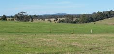 Red Hills Road, Marulan - House for Sale - 2012340515