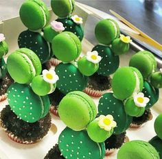 Cactus cupcakes with macarons on top - and small flowers, just sweet ♥ . - Cactus cupcakes with macarons on top – and small flowers, just sweet ♥ … - Cute Desserts, Delicious Desserts, Yummy Food, Disney Desserts, Kaktus Cupcakes, Cactus Cake, Cactus Cactus, Cactus Food, Cute Baking