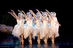 ballet theater swan lake audience - Google Search
