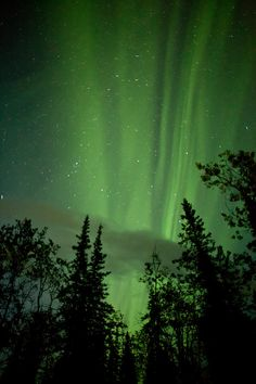 ✮ Denali Aurora...and I didn't think Denali could be any more amazing than what I saw in daylight.