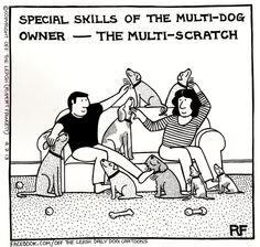 Multiscratch