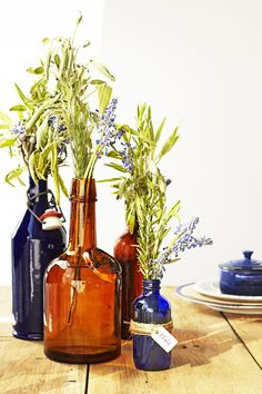 Fill some vintage bottles with flowers or herbs — leftover sage from the kitchen fits the theme, too. Click through to see more Thanksgiving centerpiece ideas! #thanksgivingcenterpieces #easythanksgivingcenterpieces #elegantthanksgivingcenterpieces