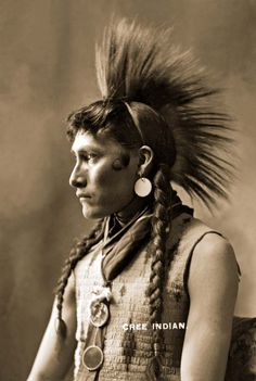 Learn about the many bands of Cree Indians. Native American Images, Native American Beauty, Native American Tribes, Native American History, American Indians, The Americans, Native Americans, Cree Indians, Into The West