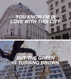 the 1975 // she's american