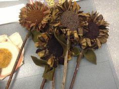 Utah Rug & Fiber Guild Hooked centers, proddy leaves...attached to sticks!