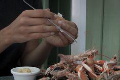Seafood in La Rochelle.