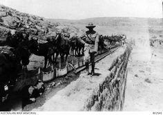 Horses of the Australian Light Horse being watered at Solomon's Pools from canvas water troughs.Ottoman Empire: Palestine, Jerusalem c 1918 Ww1 Pictures, Horse Water, Water Trough, Lest We Forget, Back In Time, World War I, Wwi, Warfare, First World