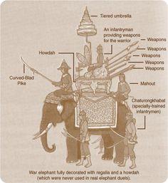 Siam, Thailand & Bangkok Old Photo Thread - Page 5 Culture Of Thailand, Muay Boran, War Elephant, Thailand Elephants, Great Philosophers, Medieval, Thai Art, Asian History, Man Set