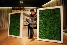 стабилизированный мох: 26 тис. зображень знайдено в Яндекс.Зображеннях