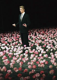 """Nelken, Pina Bausch, 1982 """"Nelken"""" are carnations, and in Pina Bausch's… Pina Bausch, Contemporary Dance, Modern Dance, Nothing But Flowers, Dance Movies, Stage Set Design, Dramatic Arts, Opus, Midsummer Nights Dream"""