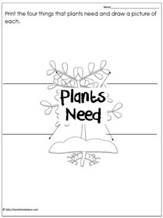 Plant Needs Worksheet