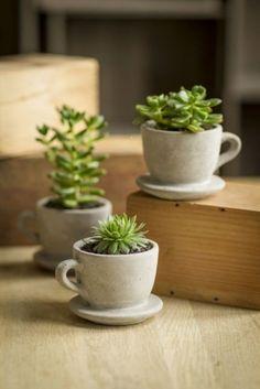 Bohemian Jewelry and Women's Accessories succulents planters cute little desk plants