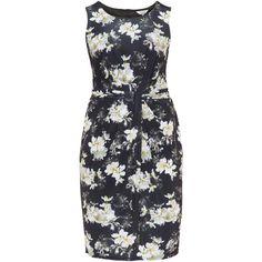 Studio 8 Black / Multicolour Plus Size Floral print dress (2.155.785 IDR) ❤ liked on Polyvore featuring dresses, black, plus size, floral print dress, plus size knee length dresses, knee length formal dresses, womens plus dresses and colorful dresses