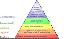 The article explains Maslow Hierarchy of needs and how it is connected with poverty,perspective on poverty,poor lines and poverty signs in palmistry. Maslow's Hierarchy Of Needs, Autonomic Nervous System, Self Actualization, Palm Reading, What's The Point, Palmistry, Alternative Health, Smart People, Physical Activities