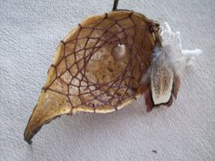 Milkweed Pod Dreamcatcher Dark Chocolate Brown with Decoupage Gift Box All Natural Nature Ornament with Feather