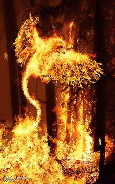 Elemental Photo Manipulations: Fire | CreativePro.com
