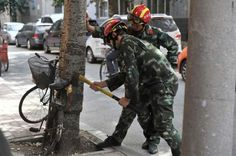 Firefighters try to remove the bike from the trunk. Amazing Life: Tree Grows Up With a Bike Embedded into the Trunk http://www.visiontimes.com/2015/09/13/amazing-life-tree-grows-up-with-a-bike-embedded-into-the-trunk.html