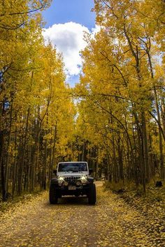 The Jeep Store is your one-stop-shop for all things automotive sales and service, in Ocean Township near Jackson & Long Branch, New Jersey. Jeep Jk, Jeep Truck, Jeep Wrangler For Sale, Jeep Wrangler Unlimited, Camping Jeep, Jeep Trails, Badass Jeep, Road Trip, Cool Jeeps