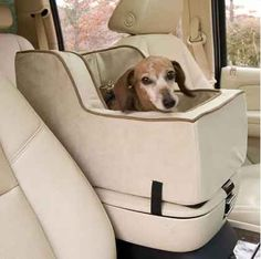 This attachment for when your car must provide the utmost luxury seating for its cutest passenger: