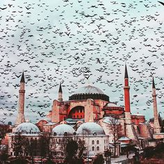Hagia Sophia in Istanbul in der Türkei! The Guardians of the Hagia Sophia! Turkish Architecture, Mosque Architecture, Historical Architecture, Istanbul City, Istanbul Travel, Beautiful Mosques, Most Beautiful Cities, Hagia Sophia Istanbul, Turkey Travel