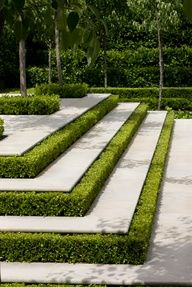 This will be used as a hardscape, with the boxwood hedges being used to accentuate the stepts to help tie in the boxwood fences in the garden to the patio in a more intimate way. Garden Steps, Garden Paths, Box Garden, Garden Floor, Formal Gardens, Outdoor Gardens, Landscape Architecture, Landscape Design, Architecture Design