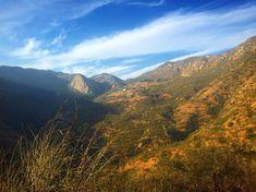 The perfect way way to close out 2017...with hike @solsticecanyon Malibu hiking with my dog Drogo (he loves our Malibu hikes). #solsticecanyon #canyon #mountains #malibu  #zen #photooftheday #photographer #outside #peace #happy #bluesky  #view  #losangeles #horizon  #hills #hiking  #weekend #photooftheday  #naturephotography #nature #gopro #cardio  #exercise  #workout #flowers #sunnyday #sunny #sky #bluesky  #weekend #mountains #creek #hikingwithdogs